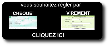 payer-cheque-virement